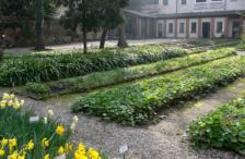 orto_botanico3