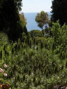 5_giardini Hanbury - Ventimiglia