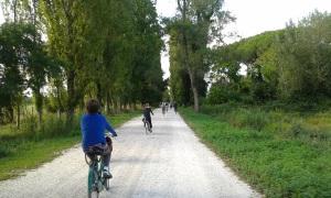 Biciclettata nel Parco di San Rossore